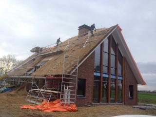 Brandveiligheid rieten dak